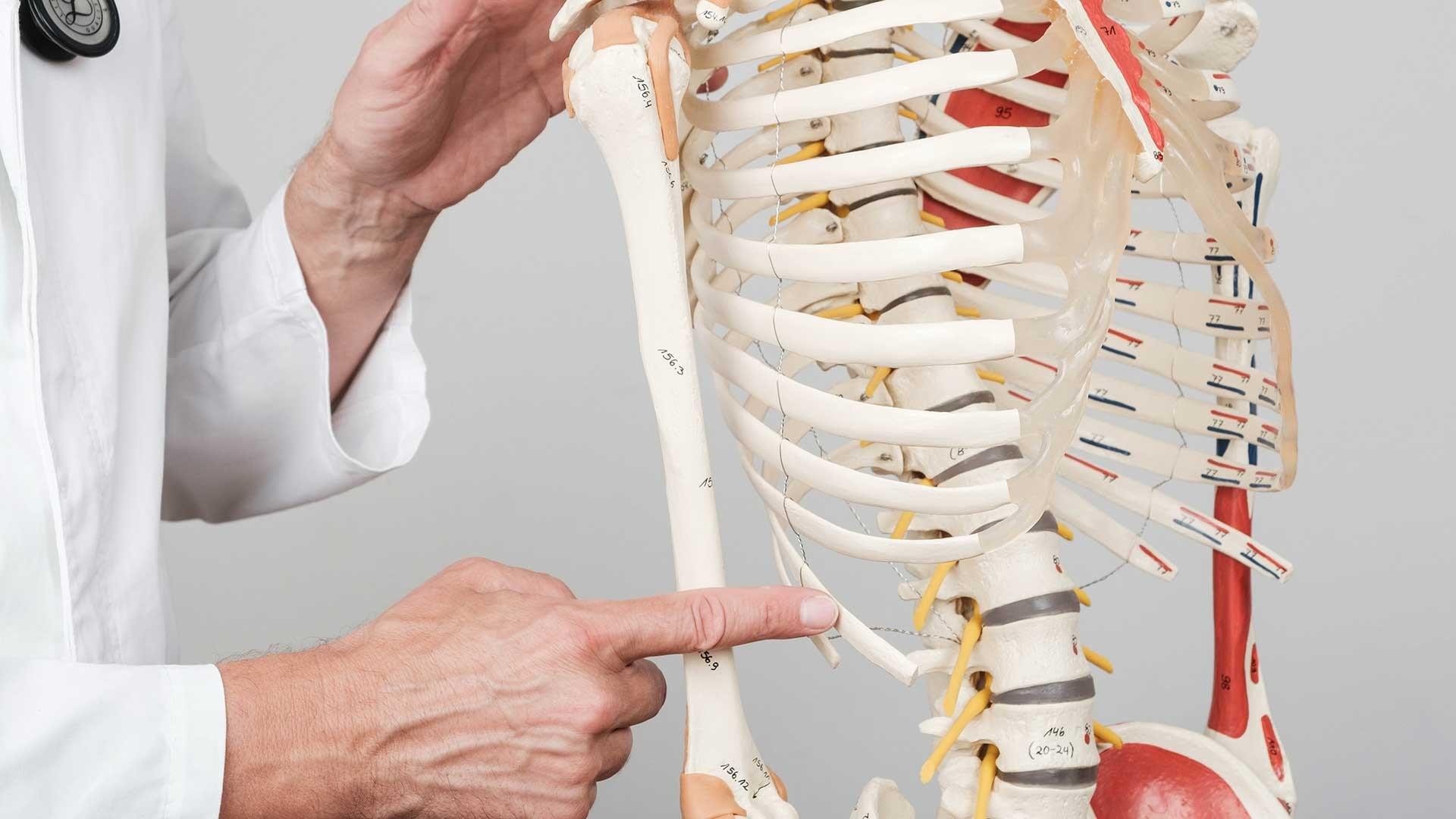 Nasljedne-i-urodene-bolesti-kostiju-i-zglobova