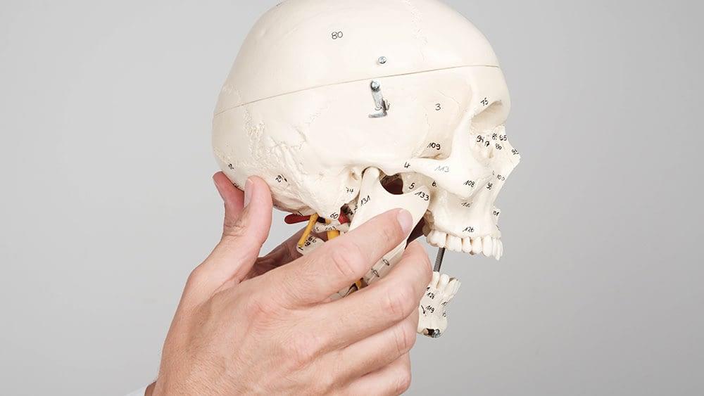 Bolesti glave