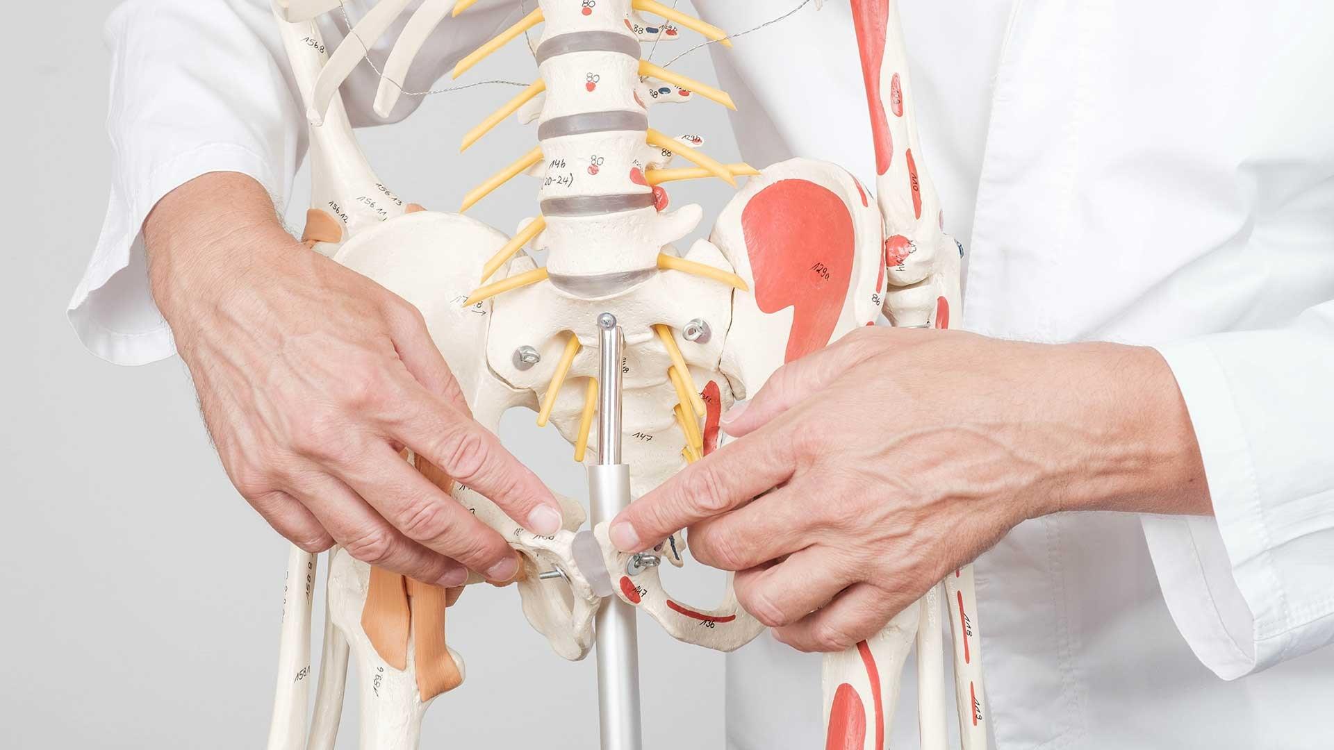 Seronegativne-spondiloartropatije-i-seronegativni-spondiloartritisi